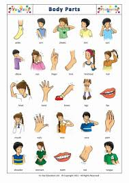 number names worksheets english test for kindergarten free