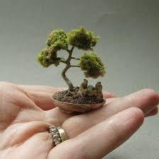 508 best miniature gardens images on bonsai trees