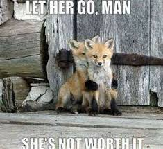 Cute Baby Animal Memes - cute baby animal pictures with quotes happy photo quotes