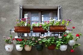 balkon blumenkasten chestha balkon blumenkasten idee