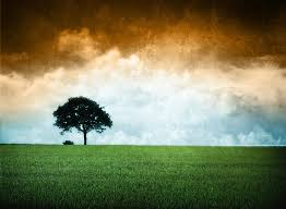 Image Indian Flag Download Tricolor Wallpapers Group 61