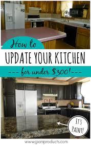 Kitchen Renovation Ideas On A Budget by 25 Best Cheap Kitchen Remodel Ideas On Pinterest Cheap Kitchen