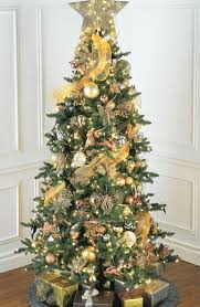 Christmas Decorations In The Home by 46 Best Christmas Trees Images On Pinterest Christmas Time Xmas