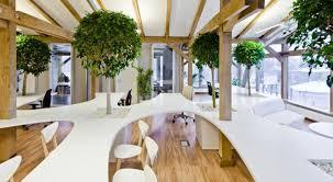 concept for indoor tree planter box homesfeed