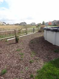 landscaping along fence line oxyir us