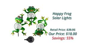 solar frog light happy frog solar lights the book
