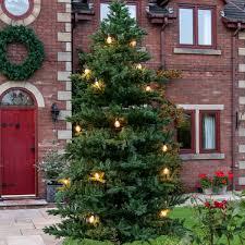outdoor green richmond fir artificial real feel pe christmas tree