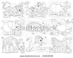 zoo african animals cute tiger monkeys stock illustration