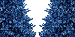 9 best blue trees blue colored artificial trees