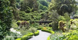 New Zealand Botanical Gardens Botanical Gardens Wellington New Zealand 2