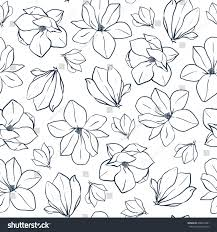 graphic magnolia flowers buds vector spring stock vector 608594381