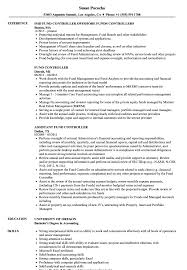 sle resume templates accountants compilation report income fund controller resume sles velvet jobs