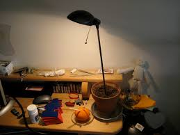 Anglepoise Desk Lamp Ikea Battery Operated Desk Lamp Ikea Best Home Furniture Decoration
