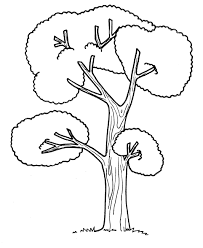 apple tree coloring page for the kids picture of a pine plants