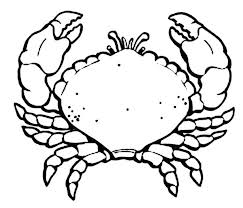 Crab Coloring Pages Hermit Crab Coloring Pages Free Crab Coloring Page
