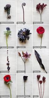 wedding flowers names purple and wedding flowers purple wedding flowers purple