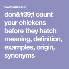 Count Your Chickens Before They Hatch Meaning Don T Count Your Chickens Before They Hatch Meaning Definition