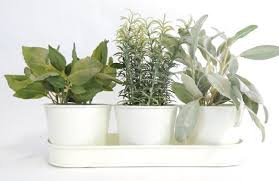 indoor windowsill planter cheap indoor windowsill planter find indoor windowsill planter