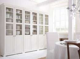 Glass Door Cabinet Kitchen Furniture Interesting Ikea Curio Cabinet For Vertical Style