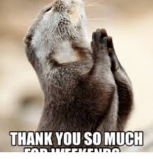 Funny Thank You Meme - 25 best memes about thank you so much funny thank you so much