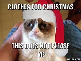 Christmas Cat Memes - tips christmas new years the law report