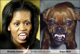 Obama Dog Meme - dogs that look like obama contest who has the best scowling