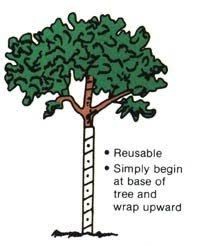 walter e clark vinyl tree guard 00424 tree plants