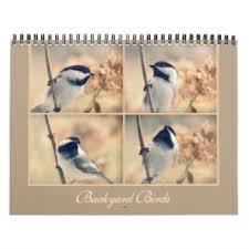 Birds In Your Backyard Chickadee Calendars Zazzle