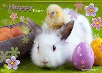 free easter cards ecards with tag free easter cards ecardsland