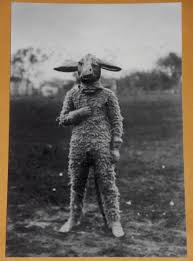 weird funny creepy vintage animal costume photo giraffe