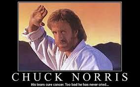 March Birthday Memes - happy birthday chuck norris march 10th every year watch freeks