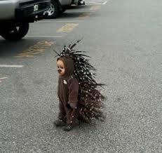Kids Tiger Halloween Costume 270 Kid U0027s Animal Costumes Images Animal
