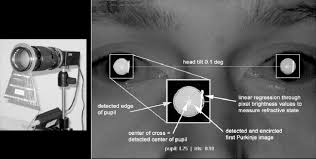 is adaptation perceived interocular differences in height