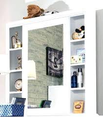 Mirror With Storage For Bathroom Bathroom Mirror With Storage Yamacraw Org