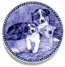 australian shepherd family dog australian shepherd family danish blue dog plate