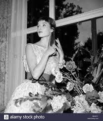 elsa martinelli hatari elsa martinelli italian film actress stockfotos u0026 elsa martinelli