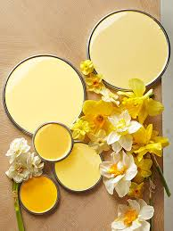 decorating with color expert tips daffodils hue and yellow