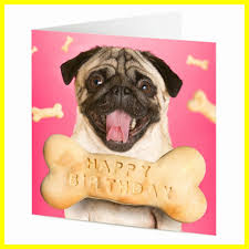 Pug Birthday Meme - awesome pug birthday card funny dog with cute homebaked bone pics