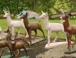 hoax museum animals