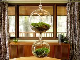 bubble glass hanging terrarium air plant container pots for