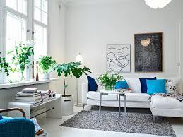 plante verte dans une chambre deco chambre plante 053117 emihem com la meilleure conception