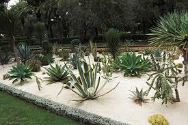 Cactus Garden Ideas Cactus Garden Ideas Dunneiv Org