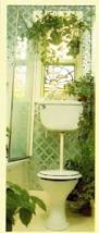 Best Plants For Bathrooms Growing Plants At A North Facing Window