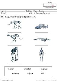 free unit 4a moving and growing printable resource worksheets for kids