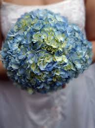 hydrangea wedding bouquet wedding hydrangea hydrangea bridal bouquet