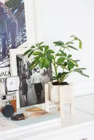 Modern White Planter by Plant Stand Remarkable Planterth Wood Stand Photo Inspirations