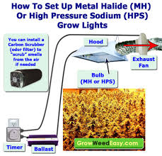 best light to grow pot this diagram explains how to set up up a hid grow light including