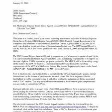free annual report template non profit treasurer report template non profit exles resumes non profit