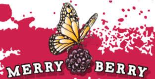 merry berry presents to columbia mo entrepreneurs 1millioncups com