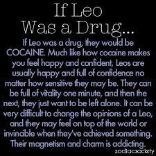 Leo Zodiac Memes - 26 best i m a leo images on pinterest zodiac signs leo leo